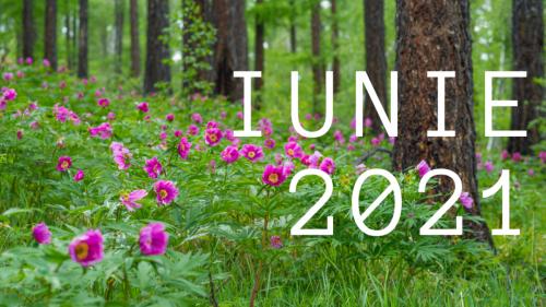 Iunie 2021
