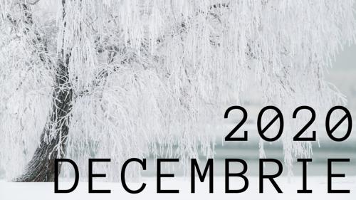 Decembrie 2020