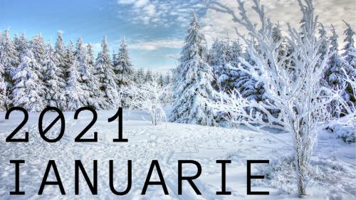 Ianuarie 2021